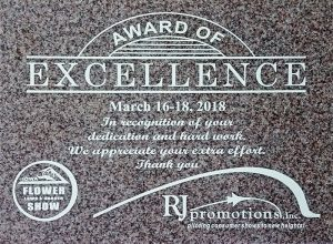 Award Of Excellence 2018