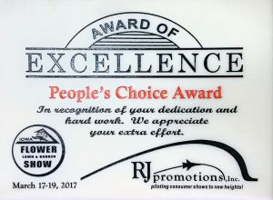Award Of Excellence Peoples Choice 2017