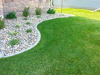 Excel Lawns & Landscape Shares Some Interesting Lawn Care Trivia that Everyone Should Know