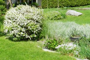 Landscaping in Des Moines IA