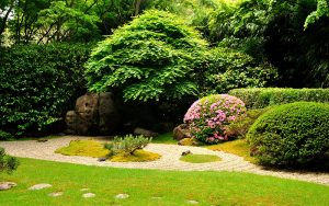 Landscaping in Pleasant Hill IA