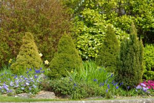 Landscaping in West Des Moines IA